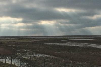 Appledore – Hastings Battleaxe explores Romney Marsh