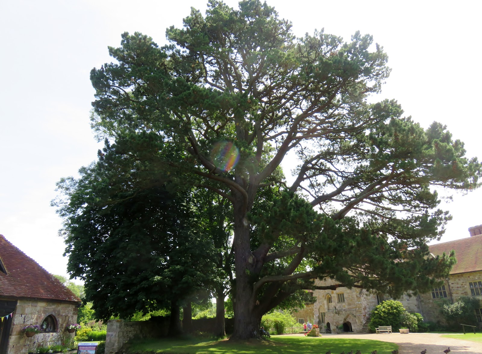 Michelham Priory – a peaceful day out