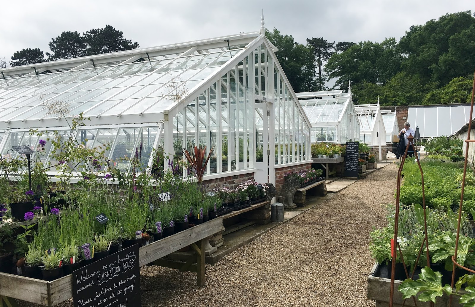 The Walled Nursery near Hawkhurst – rather a special place